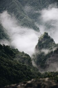[Foggy mountainside]